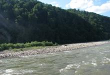 стрімка карпатська річка протікає попід горою