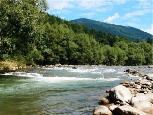 річка на маршруті карпатського трамваю