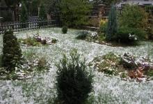 садок попереду будинку в карпатах в зимовий час